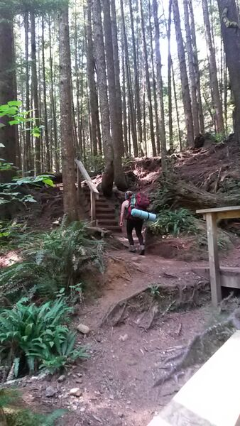 Juan de Fuca Trail - Pacific Rim National Park