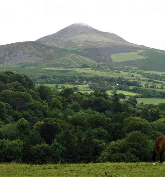 Irlande, Wicklow Mountains.